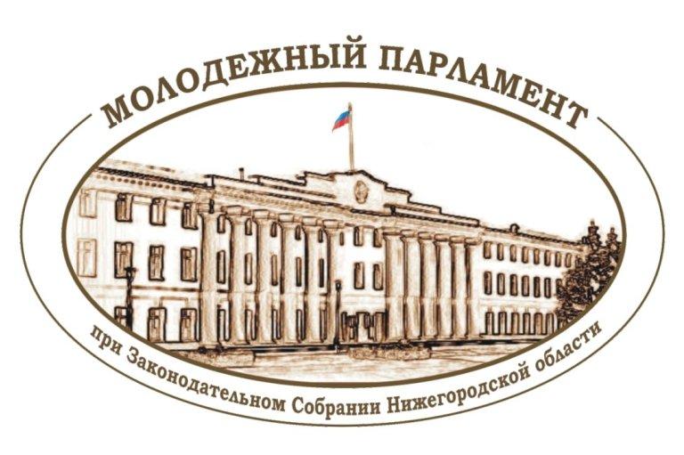 Выборы представителя в Молодежный парламент